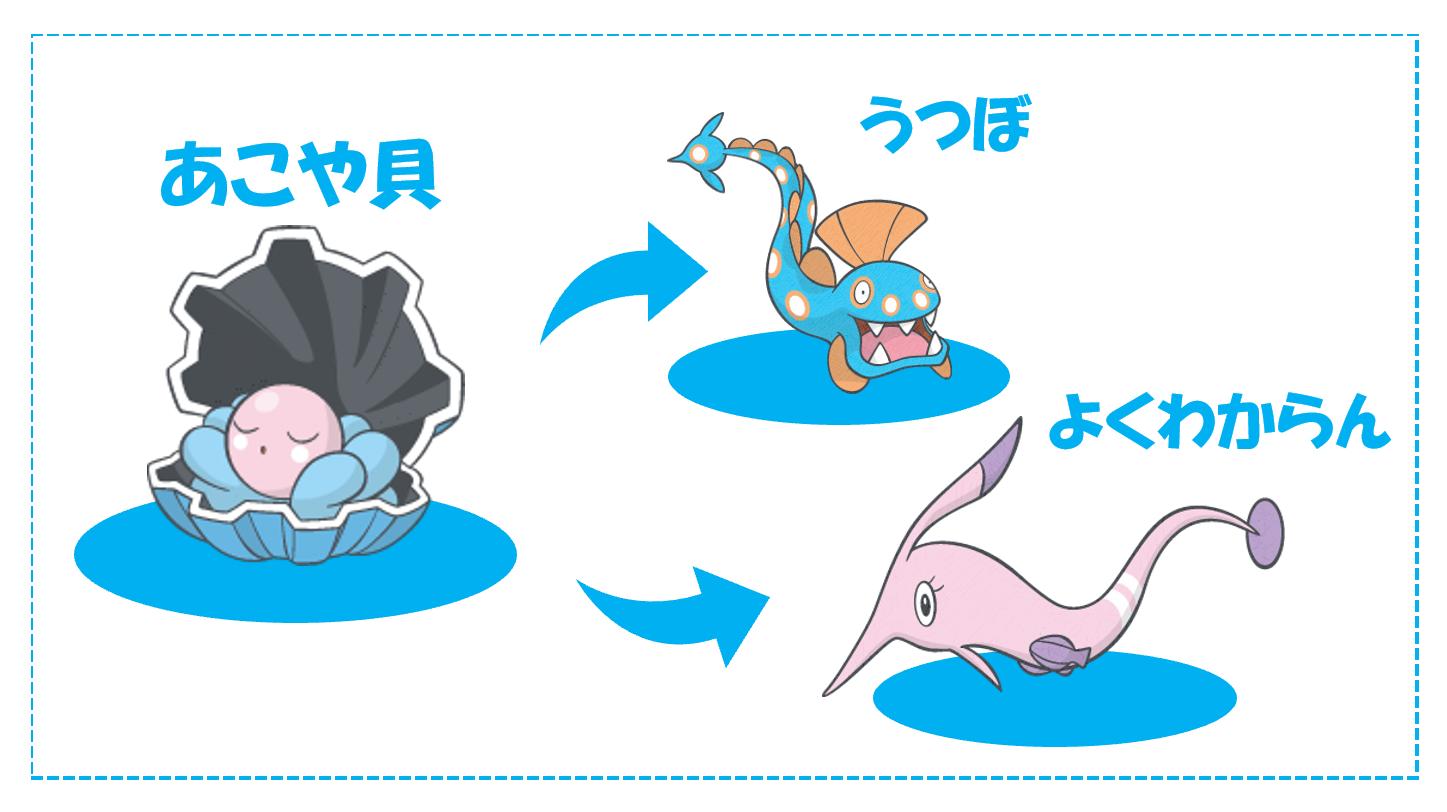 ウツボに進化するアコヤ貝