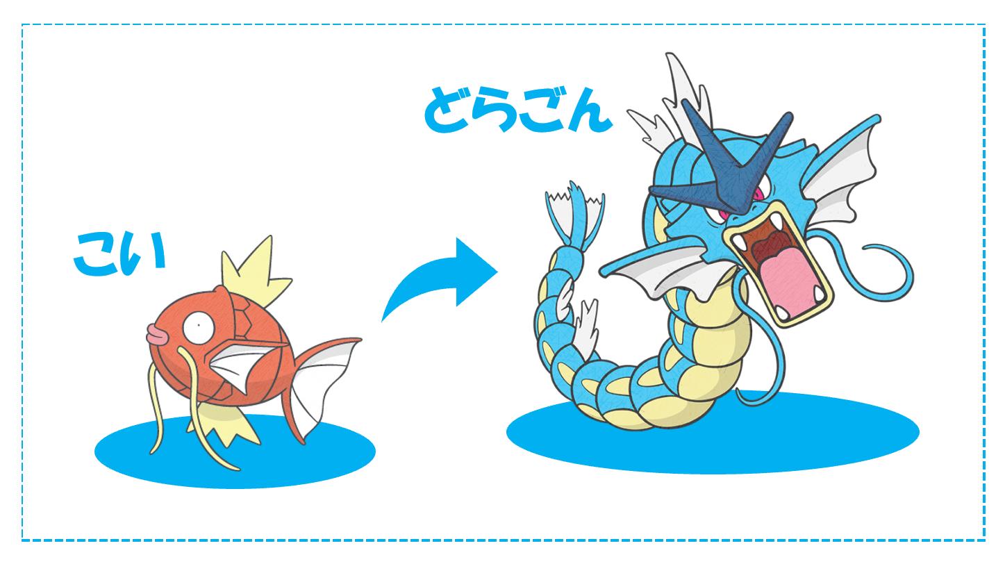 竜に進化する鯉